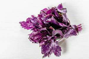 Bunch of fresh purple Basil on white background. Top view (Flip 2019)