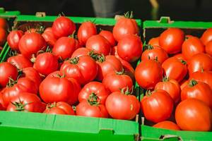 Bunch Of Fresh Tomatoes In Market (Flip 2019)