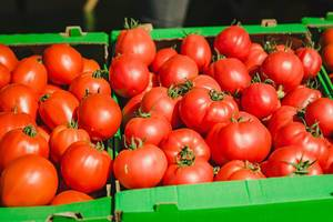 Bunch Of Fresh Tomatoes In Market