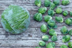 Cabbage and Brussels sprouts on wooden background