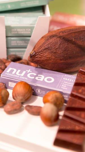 Cacao beans, hazelnuts and Nucao chocolate bar
