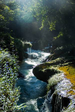 Cahabon River with Backlight