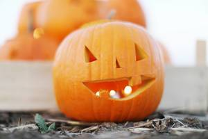 Candles in a carved pumpkin for Halloween (Flip 2019)