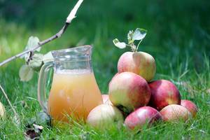 Carafe of apple juice and apples on the grass (Flip 2019)