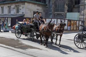 Carriage ride for tourists through Vienna, Austria, with St. Stephen