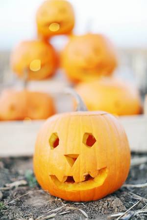 Carved pumpkin for Halloween (Flip 2019)