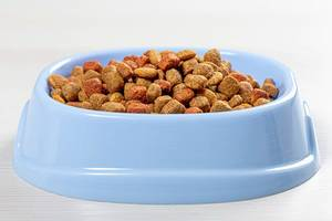 Cat food in blue bowl on white wooden background (Flip 2019)