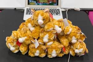 Cat plush toys in front of a laptop