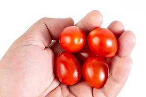 Cherry Tomatoes in the hand