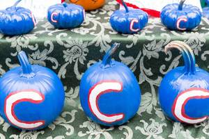 Chicago Cubs Squashes