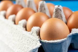 Chicken Eggs in the cardboard box (Flip 2019)