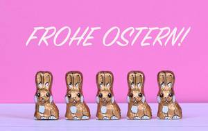 Chocolate Easter bunnies with Frohe Ostern text