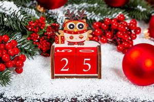 Christmas Concept -First Day - Owl on number 25