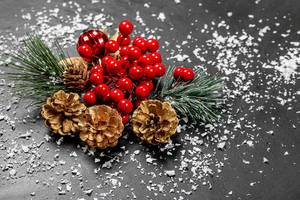 Christmas decor with snow on black background (Flip 2019)