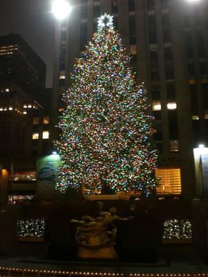 Christmas Tree, Rockefeller Center