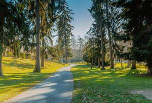 City park in Maribor