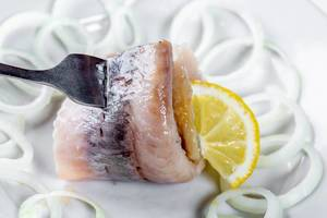 Close Up Food Photo of a Herring filet with a Slice of Lemon and fresh Onions on a white Plate