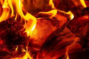 Close up of a burning book (Flip 2020)