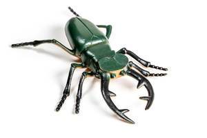 Close-up of a large stag beetle toy on a white background