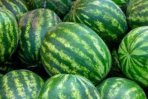 Close-up of fresh watermelons (Flip 2019)