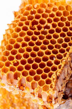 Close-up of honey honeycomb