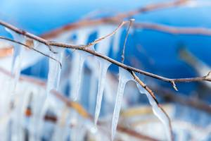 Close-up of several icicles