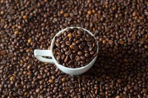 Close Up of Small White Coffee Cup filled with Coffee Beans on Coffee Bean Background