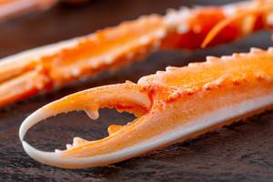 Close-up of the claws of a cooked lobster (Flip 2020)