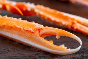 Close-up of the claws of a cooked lobster