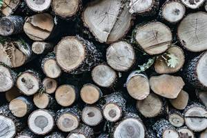 Close Up on a Stack of Firewood