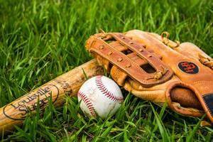 Close Up Photo of Baseball, Baseball Bat and Glove laying on Gras