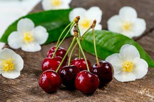Close Up Photo of Red cherries with white flowers on wooden board