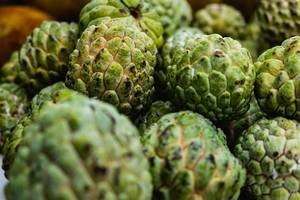 Close up shot of ripe atis fruits