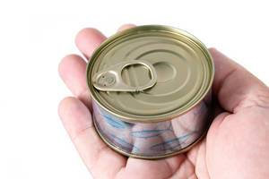 Closed Canned Fish in the hand (Flip 2019)