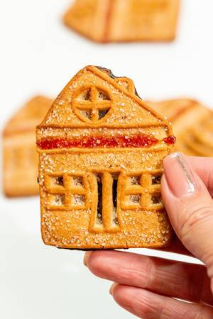 Closeup of the cookie house in the hand (Flip 2019)