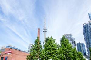 CN Tower Toronto with Trees in Front