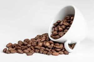 Coffee beans in coffee cup on white