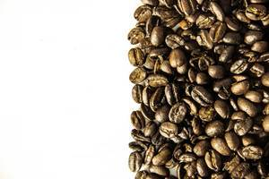 Coffee Grains Division Line