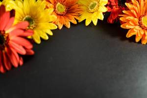 Colorful flowers froming a frame on a black surface