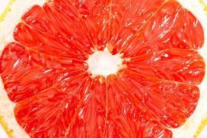 Colorful fruit pattern of fresh grapefruit slices