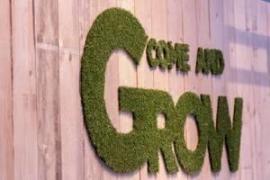 Come and Grow aus Kunstrasen