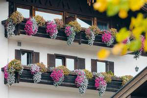 Countryside house in German village Reit im Winkl, flowers at balconies (Flip 2019)