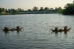 Decorated Boats on Crescent Lake in Ho Chi Minh City