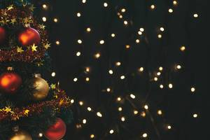 Decorated Christmas tree and luminous garland behind (Flip 2019)