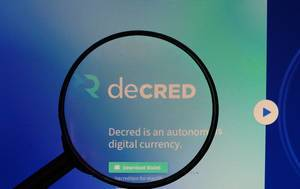 Decred logo under magnifying glass
