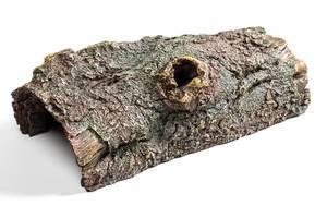 Deko aus altem Holz für das Aquarium auf weißem Hintergrund