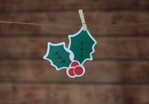 Deko Weihnachtsbeeren mit Klammern an Leine befestigt