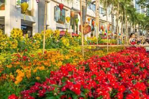 Dekoration aus Blumen und Papierlaternen in Flower Street zu Chinesischem Neujahr in Saigon, Vietnam