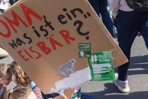 """Demoplakat mit der Frage """"Oma, was ist ein Eisbär?"""" hochgehalten von jungen Schülern"""