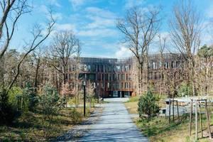 Der Weg zu einem modernen Holzgebäude auf dem Campus in Potsdam, harmonisch in die grüne Natur eingebettet